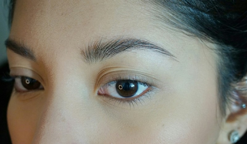 l'oreal brow gel
